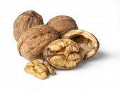 ������, ������: Walnuts