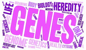 picture of genes  - Genes word cloud on a white background - JPG