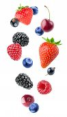 Isolated Various Berries poster