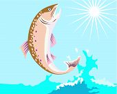 image of brook trout  - Vector art of a trout and fishing - JPG