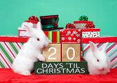 20 Days Until Christmas Wood Blocks On A Dark Green Box With Presents Stacked Around It, White Baby  poster