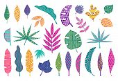 Abstract Tropical Leaves. Leaf Summer Tribal Elements, Trendy Abstract Palm Leaves, Modern Floral De poster