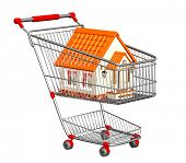 House for sale. New house in shopping cart. Isolated over white