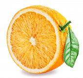 Orange fruit half with orange leaf on white background.  File contains clipping path. poster