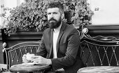 Morning Coffee. Mature Man With Beard Relax In Cafe. Ready For Romantic Date. Brutal Bearded Hipster poster