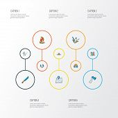 Tourism Icons Colored Line Set With Forest, Hunting Knife, Hiking Man And Other Sharp Elements. Isol poster