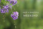 Inspirational Motivational - Have A Beautiful Weekend. With Beautiful Soft Purple Flowers And Green  poster