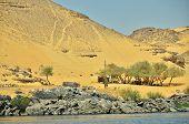 stock photo of nubian  - Nubian village near Aswan - JPG