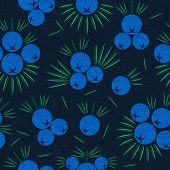 Juniper Berries Seamless Pattern. Juniper Berries With Leaves On Shabby Background. Original Simple  poster