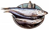 Spicy Salted Sprats In Ceramic Bowl