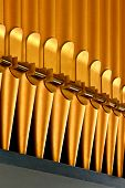 picture of pipe organ  - A row of golden color organ pipes - JPG