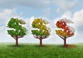image of retirement age  - Investment loss and financial stress business concept with three trees shaped as a dollar or money symbol gradually losing leaves in an autumn theme from green to red as an idea for aging savings crisis needing a new strategy - JPG