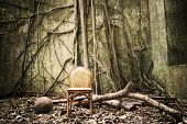 stock photo of discard  - the roots on the wall and the empty chair  - JPG
