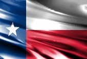 image of texans  - Texan flag waving in the wind with some folds - JPG