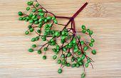 picture of elderberry  - Unripe fruits of elderberry on a wooden board - JPG
