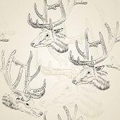 stock photo of deer head  - Sketch deer head on the beige background - JPG