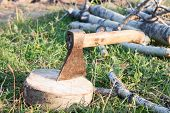 stock photo of ax  - Tourist ax stuck in stump on a background of green grass - JPG