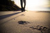foto of sole  - Feet cultivating man nordic walking on the beach