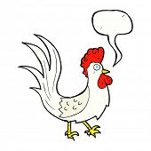 image of cockerels  - cartoon cockerel with speech bubble - JPG