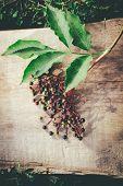 picture of elderberry  - Fresh elderberry on old wooden background - JPG