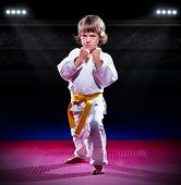picture of aikido  - Little boy aikido fighter at sports hall - JPG