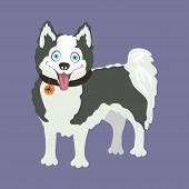 foto of eskimos  - Yakutian Eskimo dog - JPG