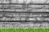 picture of green wall  - Black and white old weathered wooden wall background and green grass - JPG