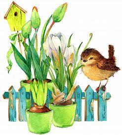 pic of garden-art  - Garden Spring Flowers and Bird - JPG