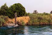 Постер, плакат: Nile Landscape Caws