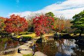 Koko-en Autumn Garden In Himeji poster