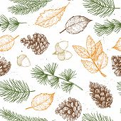 Seamless Pattern. Hand Drawn Vector Illustrations - Forest Autumn Collection. Spruce Branches, Acorn poster