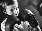 Young boy aspiring to become a boxer poster