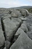 image of errat  - Limestone Pavement  - JPG