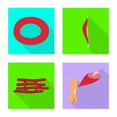 Vector Design Of Muscle And Cells Icon. Collection Of Muscle And Anatomy Stock Vector Illustration. poster