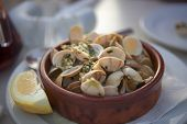 Traditional Italian Mediterranean Seafood, Bucket Of Steamed Clams, Plate With Raw Fresh Vongole Cla poster