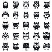 Fun Owl Icons Set. Simple Set Of Fun Owl Vector Icons For Web Design On White Background poster