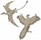 foto of pterodactyl  - Vector illustration of a pterodactyl and ancient birds - JPG