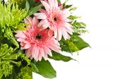 stock photo of flower arrangement  - Close up of floral arrangement with pink gerberas - JPG