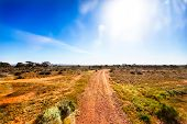 stock photo of oz  - Small gravel road in Australian outback in bright sunshine - JPG