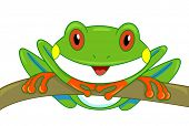 image of cute frog  - Illustration of a Cute Tree Frog Looking Curiously at the Screen - JPG
