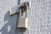 picture of hasp  - Padlock and Hasp on exterior shed doors - JPG