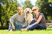 Smiling young couple hugging a labrador retreiver dog in a park
