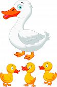 picture of duck-hunting  - Vector illustration of Duck family cartoon isolated on white background - JPG