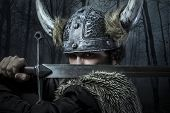 stock photo of viking  - Defense - JPG