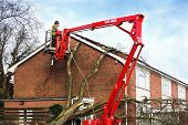 picture of cherry-picker  - Tree surgeon working up cherry picker repairing storm damaged roof after an uprooted tree fell on top of a residential house - JPG