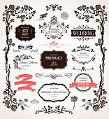 stock photo of embellish  - Vector design elements and calligraphic decorations for wedding and holiday event - JPG