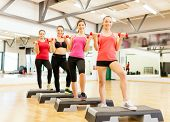 fitness, sport, training, gym and lifestyle concept - group of smiling female with dumbbells and aer