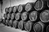 image of whiskey  - Whiskey or wine barrels in winery in black and white - JPG