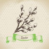 picture of pussy-willows  - Vintage Easter background with pussy - JPG