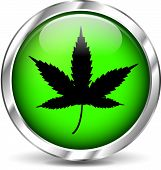 pic of ganja  - illustration of cannabis green icon on white background - JPG